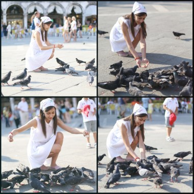 Venezia - The heart of Pigeons